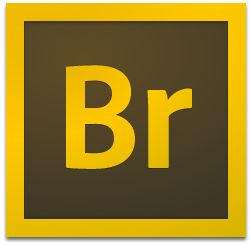 Adobe Bridge CC2019【Br cc2019破解版】绿色中文精简版