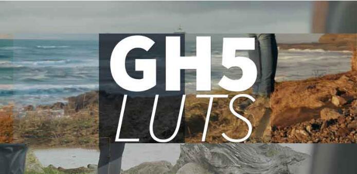 PS/AE/FCPX/达芬奇LUTs调色预设Neumann Films Gh5 Luts
