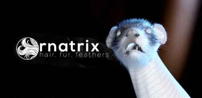 Maya毛发插件:Ornatrix V2.4.0.20213
