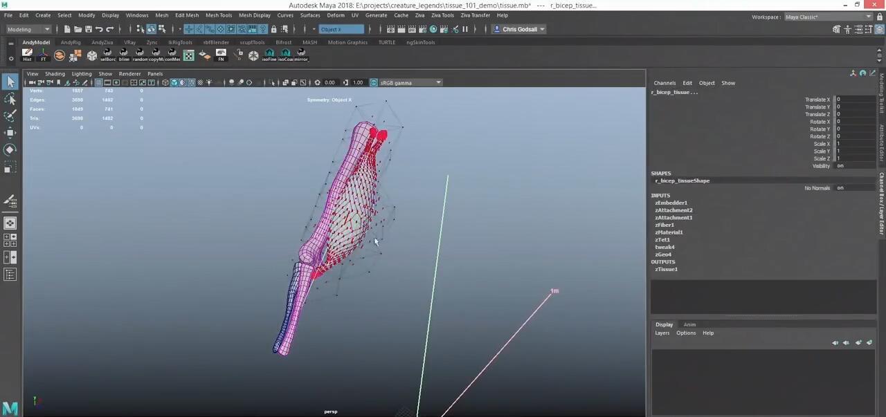 Maya角色肌肉插件:Ziva VFX v1.6.619+教程