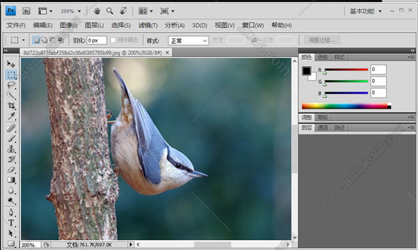 photoshop类型的软件吗