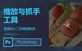 PS缩放与抓手工具_羽兔网