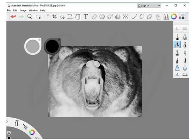 Autodesk SketchBook Pro 2020 素描工具-羽兔网资讯
