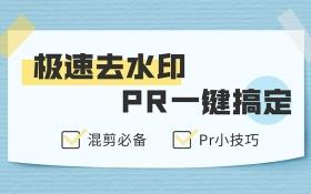 PR 一键极速去水印
