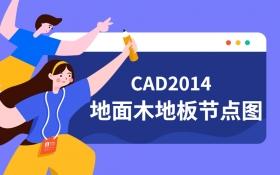 CAD2014地面木地板节点图教程