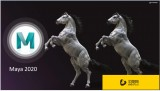 Autodesk Maya 2020 介绍-羽兔网资讯