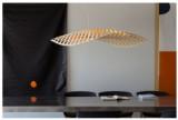 雕塑吊灯具,灵感来自于微小的海洋硅藻-羽兔网资讯